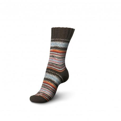 4-fädig Design Line Color Pairfect 100g - Regia, 9135 - fall night color_17094