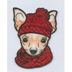 Hund mit Mütze - welti creativ_4729